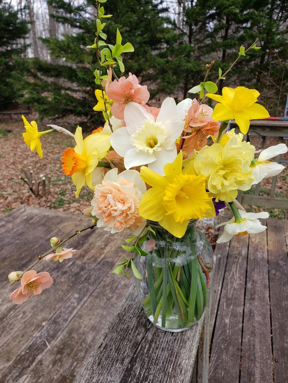 Fancy Daffodil Bouquet
